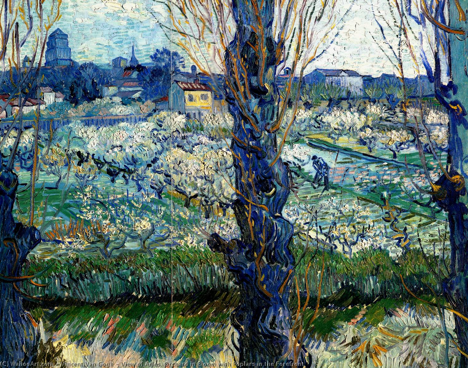 famous painting View of Arles. Orchard in Bloom with Poplars in the Forefront of Vincent Van Gogh