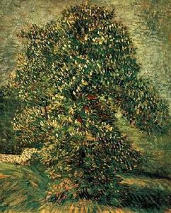 Vincent Van Gogh - Chestnut Tree in Blossom 3