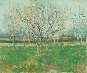 Vincent Van Gogh - Orchard in Blossom Plum Trees