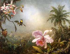 Martin Johnson Heade - Orchids, Nesting Hummingbirds and a Butterfly