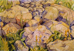 Franz Marc - Large Study of Stones