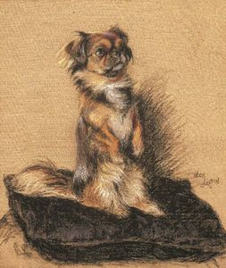 Beatrice Parsons - A Pekingese Seated On A Cushion