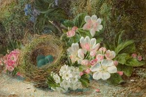 Oliver Clare - Bird's Nest With Apple And Hawthorn Blossom
