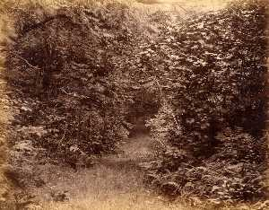 Gotthelf Pach - Scene in Woods' Wood, from the album Views of Charleston, New Hampshire