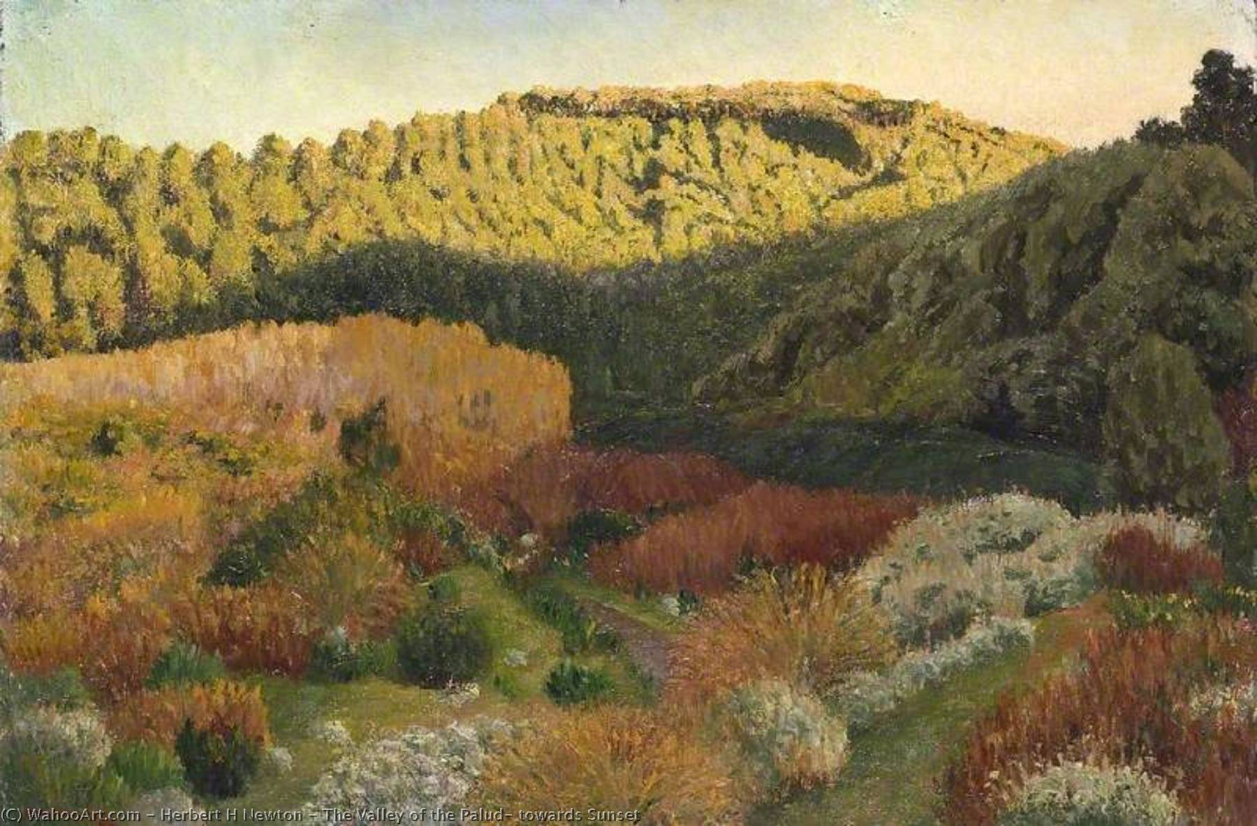 famous painting The Valley of the Palud, towards Sunset of Herbert H Newton